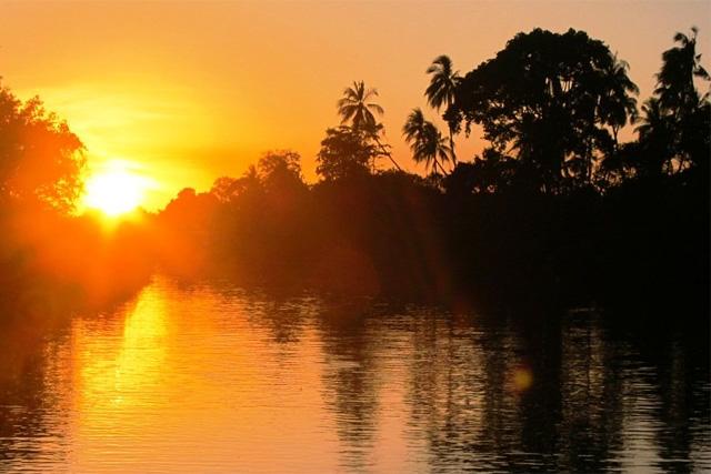 Forrás: Borneo USA Tours Snd.