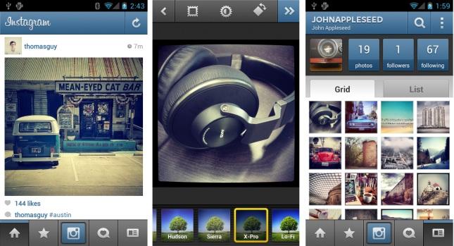 Forr�s: instagram