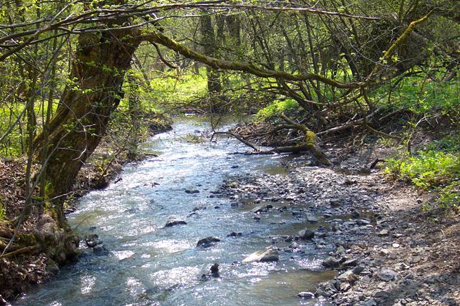 Forrás: Panoramio/Pasli