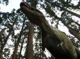 A dinoszauruszok vil�ga
