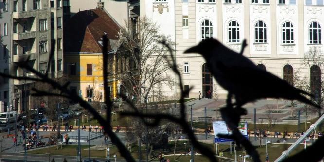 Forr�s: MTI/J�szai Csaba