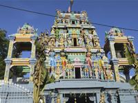 OzoneUtaz�s: Sr� Lanka